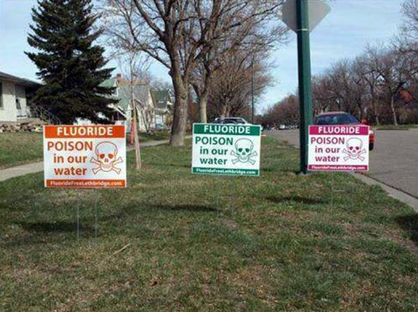 lawnSigns